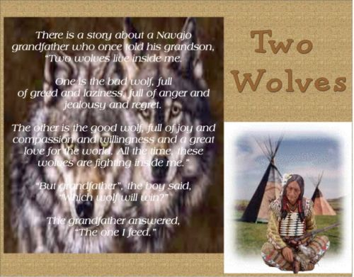 life lesson - this is an old native lesson that everybody should see and read as if is fitting to life today.