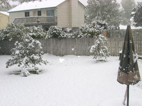 Early Snow - We usually don't get 2 inches until near the  end of November on average here in Minnesota.