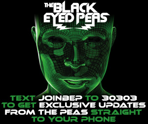 black eye peas - E.N.D album