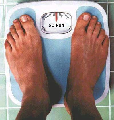 overweight - fat