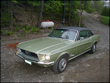 dream car - classic ford mustang.