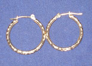 earrings - Picture of some hoop earrings. What the heck did you think I was talking about? LOL