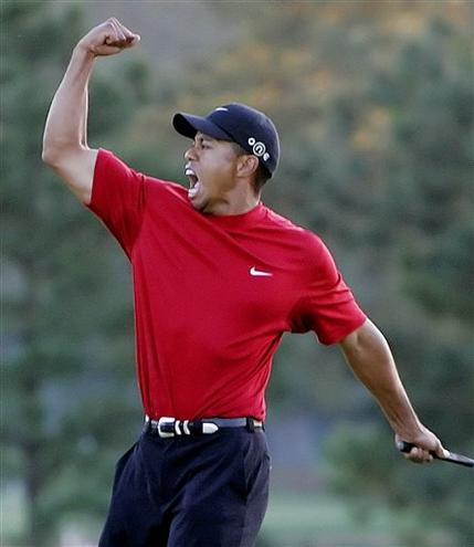 Expression of Tiger Woods - This is one of Tiger Woods Expression