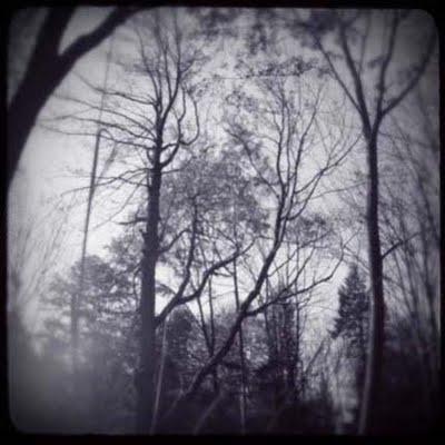 deja vu - fragments of past-life memories