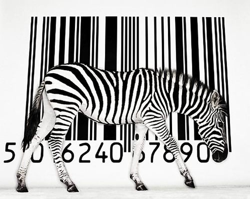 barcode - what does EAN, barcode mean