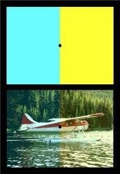 visual stimuli - We filter out constant stimulus