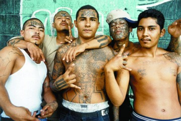 Gang - This is photo of MS13 gang...
