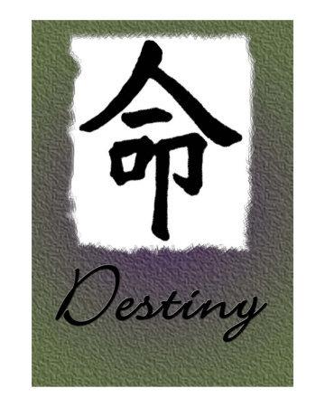 myLot Photos - destiny
