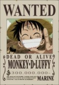 One Piece - The picture shows the main protagonist in the anime story called One Piece. His name is Monkey D. Luffy.