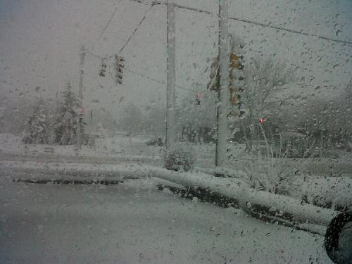 the first snow fall, as seen from outside my car w - This is what I saw out my window when I got to work. It's a blizzard! Here in Minnesota.