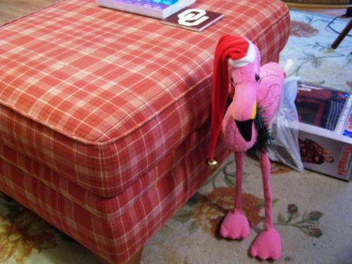 Eddie, the Flamingo -  I thought this was four feet tall until I took it out of my closet. It's around two feet tall. I brought it over to my parent's house so when my dad came home it might make him smile.