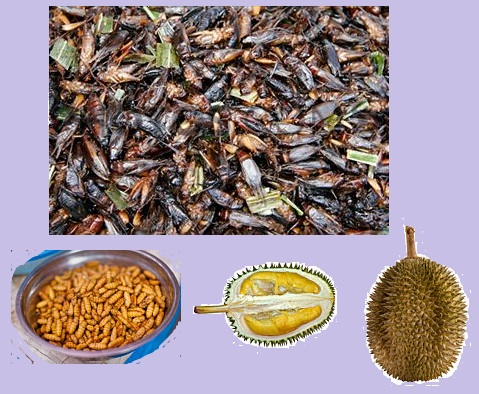 Bizarre foods - In this world there are people who eat something unusual like animal's brain, animal's eyes and animal's intestine. There are also people who eat fried insect. Some people also find that certain fruit are disgusting with it special smell and texture like durian.