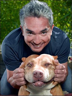 Cesar Milan - Dog whisperer