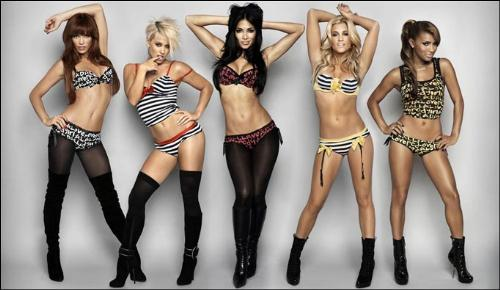 pussycat dolls - this is the pic of the females in pussycat dolls... all of them look sizzling