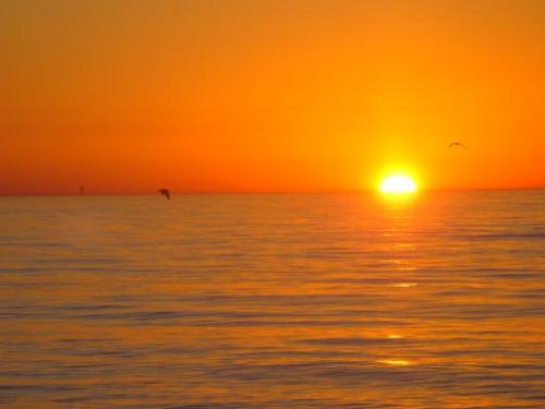 Sunrise - Sunrise on Surfside Beach, Texas.
