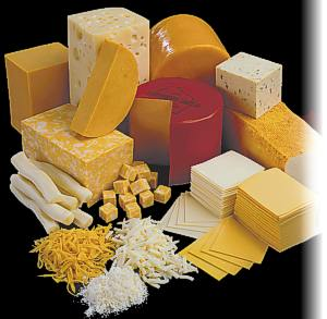 maturing cheese - An image of maturing cheese for this category
