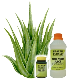 Aloe vera a wonder herb - Aloe vera is specially good for the skin and it cures various other ailments.