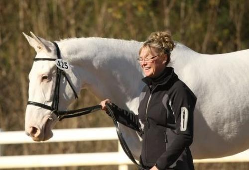 Heliodoris - A pure white TB gelding. Gorgeous! Just gorgeous!