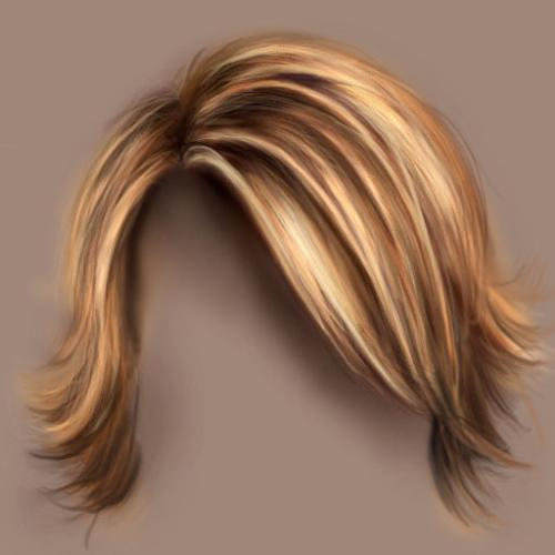 hair - an image of hair for this category