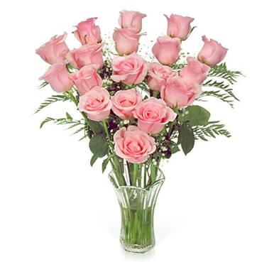 Roses - Pink Roses symboilzes breast cancer awareness.