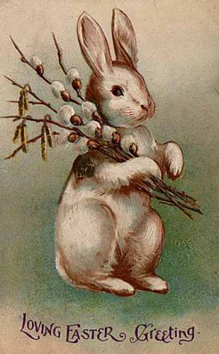 Easter Bunny - The Easter Bunny on a Easter postcard! So cute!