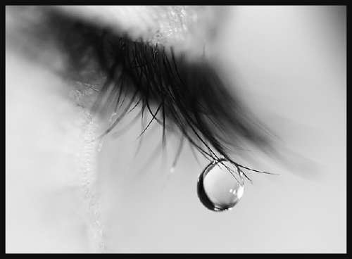 Tears - This is an image of Tears