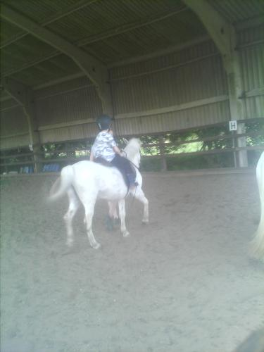 My youngest son on a gallop - Loves to gallop.