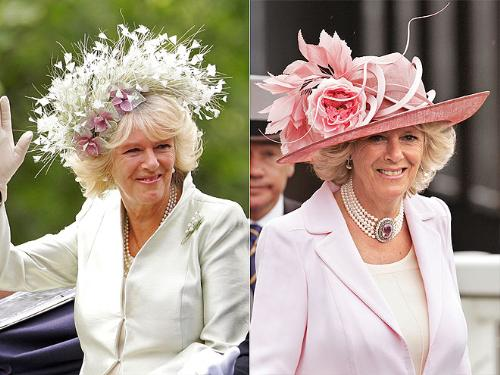 Duchess of Cornwall - When it comes to the Royals Ladies,hats are very much part of their fashion. Camille's pink hat I like. I am not crazy about the flower hat!
