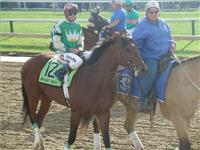 Affeet Alex - Afflect Alex won the 2005 Preakness Stakes and Belmont Stakes.
