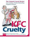 KFC cruelty - killing chickens