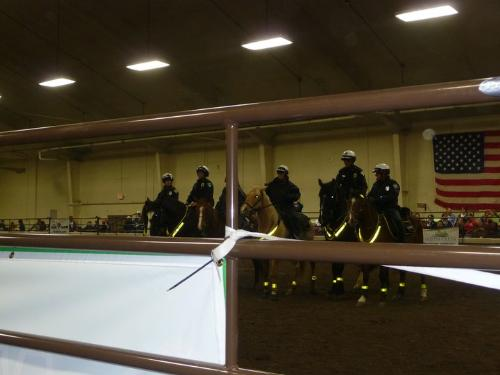Police on Horseback - Some big cities,like Milwaukee,have mounted police. This group preformed at the Midwest Horse fair.