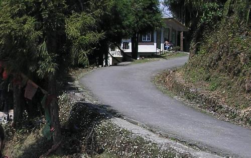 a hilly road - a hilly road gangtok
