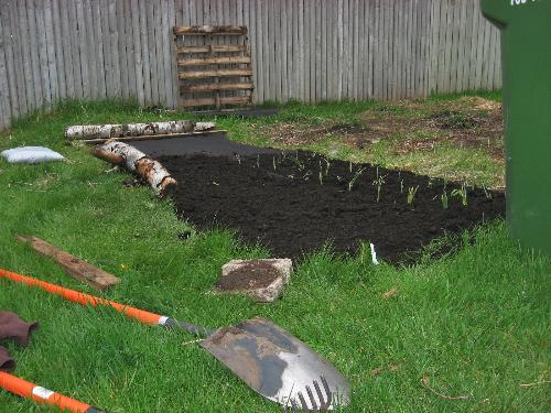 Newly planted - Onions and carrots here.