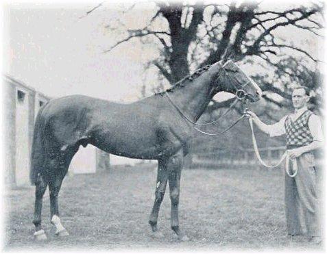 Omaha - Omaha was the son of gallant Fox. Omaha won the TRiple Crown in 1935.