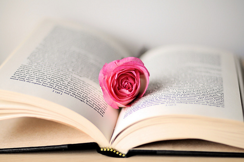 book - rose on the book