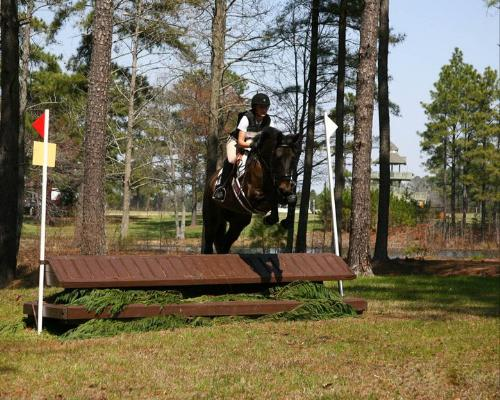 Jamie and Mocha - My friend Jamie,on her mare Mocha, competing in the cross country faze of eventing.