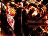 Bleach - the anime or manga Bleach