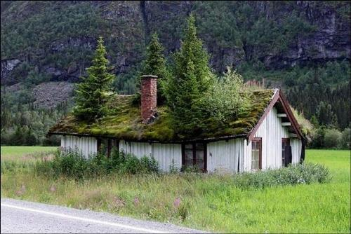 my dream home - i want to live in a house like this