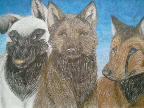 this is me, my sis and my friend as wolves - i drew this a few weeks ago ^^ i hope you like it
