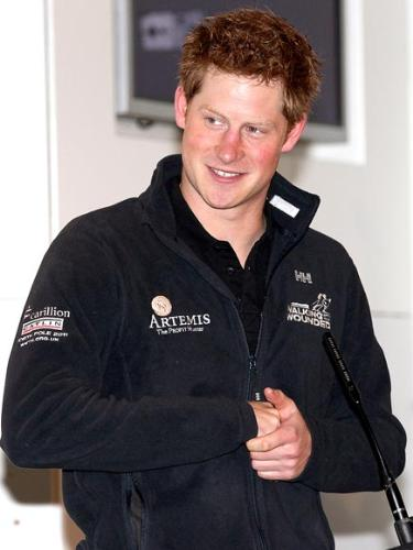 Prince Harry - Prince Harry is a cute one!