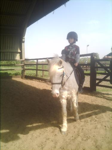 My son - Is doing great at his horse riding