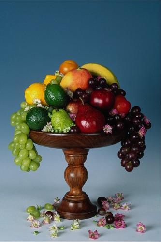 frut tree - nice tree