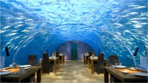 Ithaa Undersea Restaurant at Hilton Hotel - At 16 feet below sea level this is an amazing restaurant in Conrad Maldives Rangali Island.  Picture from www.Hilton.com