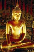 buddha - Ime a second degree reiki healer and this represents the buddha philosophy
