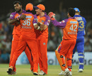 Kochi Team - Kochi Team celebrating Shane Watson's Wicket