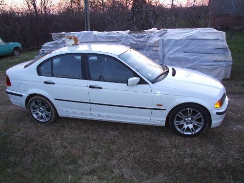 BMW320td  - my BMW320td e46 1998.