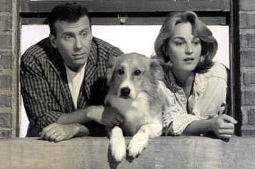 Mad About You - It starred Paul Rieser and Helen Hunt. Murray the dog was played by Maui.