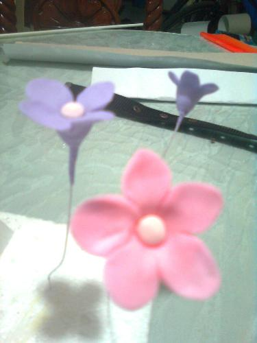 Gumpaste Flowers - These are gumpaste filler/pulled flowers that I made for a cake.