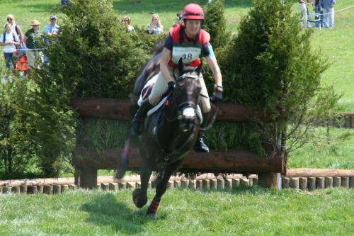 Over the jump - A rider clearing a three jump combo at the 2011 Rolex three eventing competion,in Kentucky.