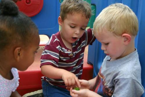 children - Children learning and developing as they grow.